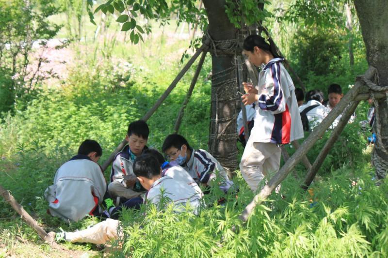 黄河故道 钓鱼比赛